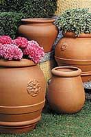 Macetas y jardineras plantas - Jardineras de terracota ...