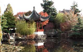 El jard n calendario de jard n hemisferio sur for Chino el jardin