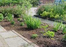 Ajardinamiento con pocos cuidados for Jardines con poco mantenimiento