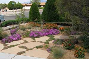 Espacios verdes de bajo mantenimiento for Jardines con poco mantenimiento