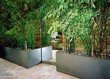 El jard n minimalista for Jardines minimalistas con bambu