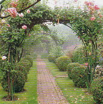 Infojardin arco de rosas for Arcos para jardin